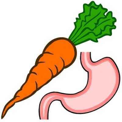 Zanahoria para el estómago