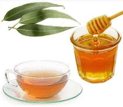 Beneficios del eucalipto con miel