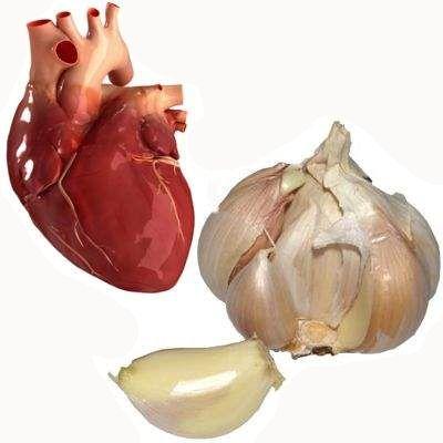 El ajo es bueno para el corazón