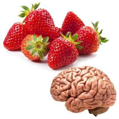 Propiedades y beneficios de la fresa para el cerebro