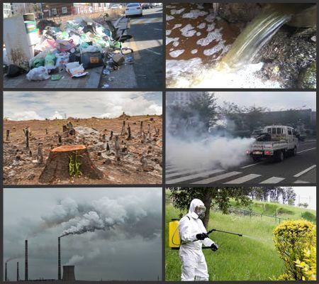 ¿Qué hace el ser humano para contaminar el medio ambiente?