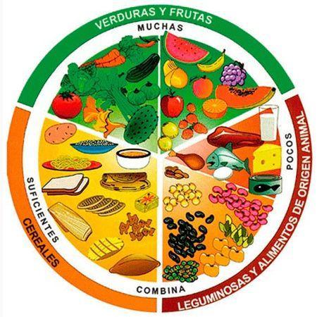 ¿Cómo podemos combinar los alimentos del plato del buen comer?