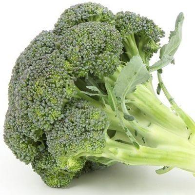 El brócoli es bueno para el cáncer